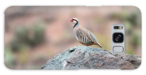Chukar Partridge 2 Galaxy Case by Leland D Howard