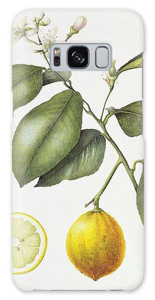 Citrus Bergamot Galaxy Case
