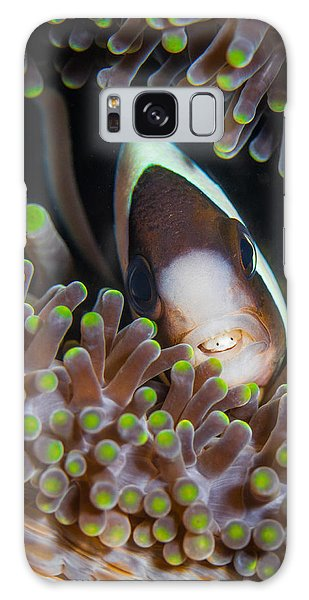 Clarks Anemone Fish Galaxy Case