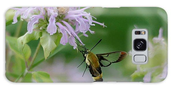 Clearwing Moth Galaxy Case