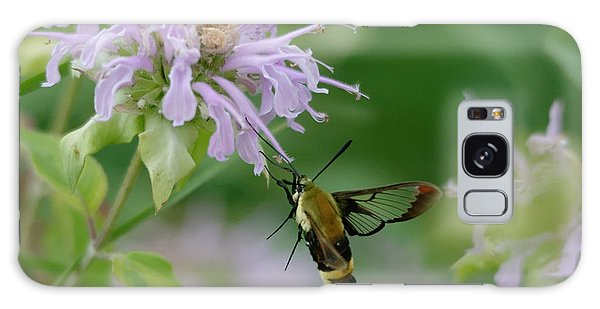 Clearwing Moth Galaxy Case