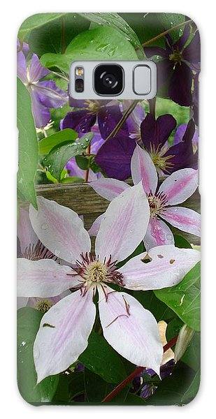 Clematis-ii Galaxy Case
