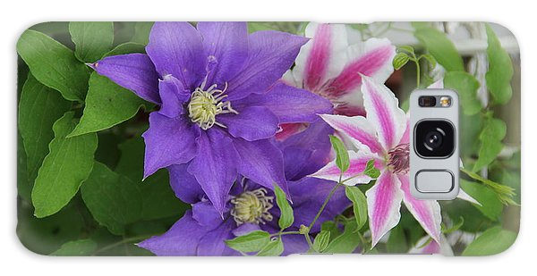 Clematis Purple And Pink White Galaxy Case