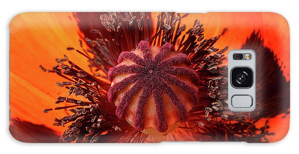 Close-up Bud Of A Red Poppy Flower Galaxy Case