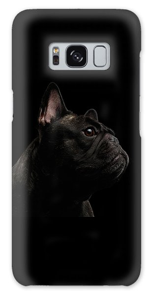 Dog Galaxy S8 Case - Close-up French Bulldog Dog Like Monster In Profile View Isolated by Sergey Taran