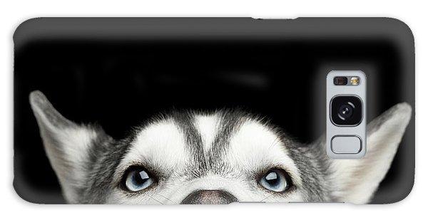 Close-up Head Of Peeking Siberian Husky Galaxy Case