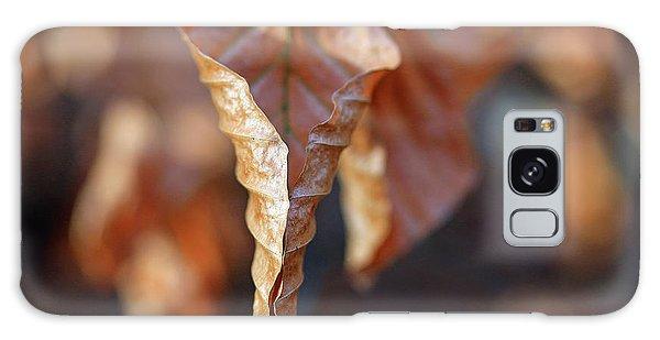 Close-up Of Autumn Leaf Galaxy Case