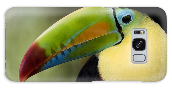 Toucan Galaxy S8 Case - Close-up Of Keel-billed Toucan by Panoramic Images