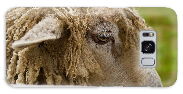 Close-up Of Leicester Longwool Galaxy Case