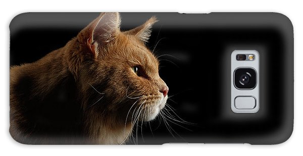 Cat Galaxy S8 Case - Close-up Portrait Ginger Maine Coon Cat Isolated On Black Background by Sergey Taran