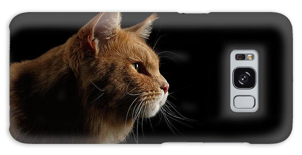 Close-up Portrait Ginger Maine Coon Cat Isolated On Black Background Galaxy Case