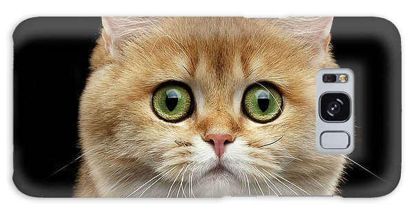Cat Galaxy Case - Close-up Portrait Of Golden British Cat With Green Eyes by Sergey Taran