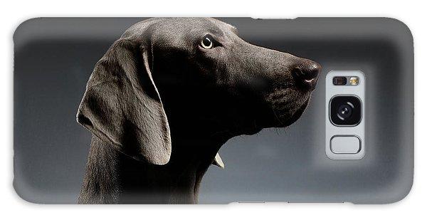 Close-up Portrait Weimaraner Dog In Profile View On White Gradient Galaxy Case