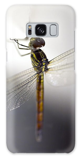 Close Up Shoot Of A Anisoptera Dragonfly Galaxy Case