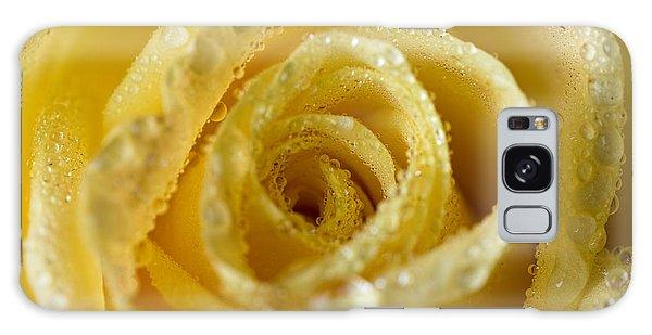 Close Up Yellow Rose Galaxy Case