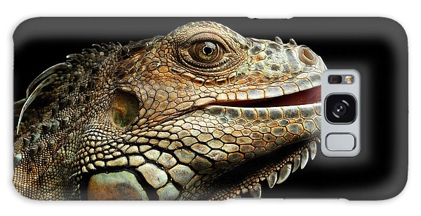 Close-upgreen Iguana Isolated On Black Background Galaxy Case by Sergey Taran