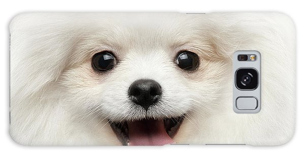 Closeup Furry Happiness White Pomeranian Spitz Dog Curious Smiling Galaxy Case
