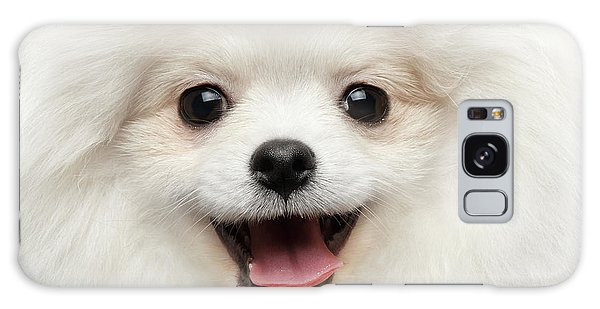 Dog Galaxy S8 Case - Closeup Furry Happiness White Pomeranian Spitz Dog Curious Smiling by Sergey Taran