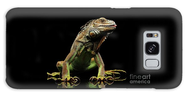 Closeup Green Iguana Isolated On Black Background Galaxy Case by Sergey Taran