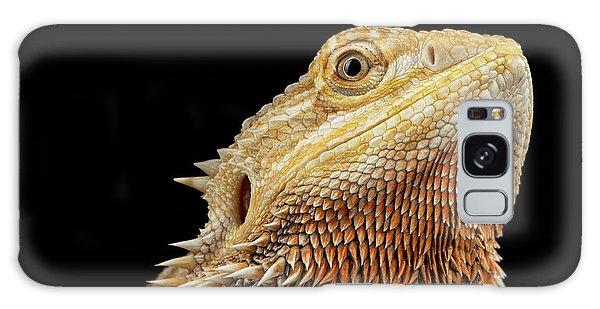 Closeup Head Of Bearded Dragon Llizard, Agama, Isolated Black Background Galaxy Case