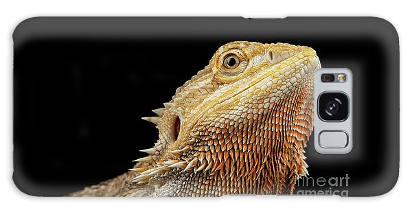 Closeup Head Of Bearded Dragon Llizard, Agama, Isolated Black Background Galaxy Case by Sergey Taran