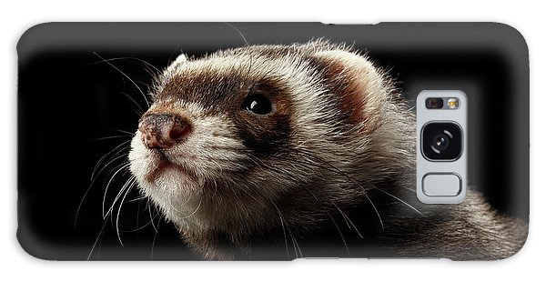 Closeup Portrait Of Funny Ferret Looking At The Camera Isolated On Black Background, Front View Galaxy Case