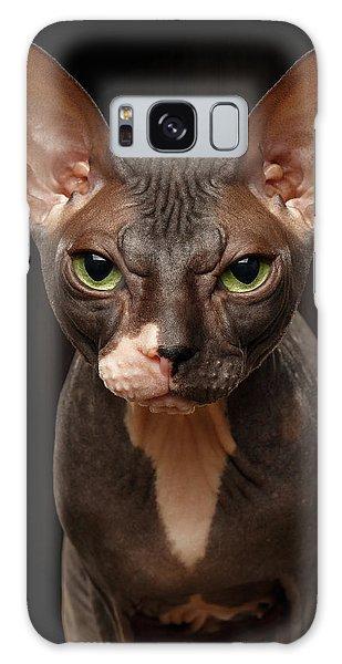 Closeup Portrait Of Grumpy Sphynx Cat Front View On Black  Galaxy Case