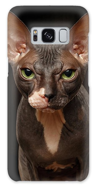 Closeup Portrait Of Grumpy Sphynx Cat Front View On Black  Galaxy Case