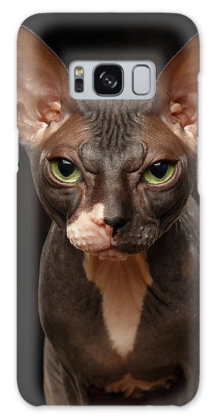 Cat Galaxy S8 Case - Closeup Portrait Of Grumpy Sphynx Cat Front View On Black  by Sergey Taran
