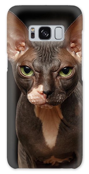 Cat Galaxy Case - Closeup Portrait Of Grumpy Sphynx Cat Front View On Black  by Sergey Taran