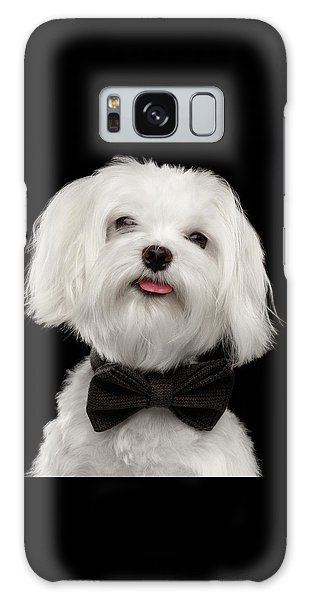 Closeup Portrait Of Happy White Maltese Dog With Bow Looking In Camera Isolated On Black Background Galaxy Case