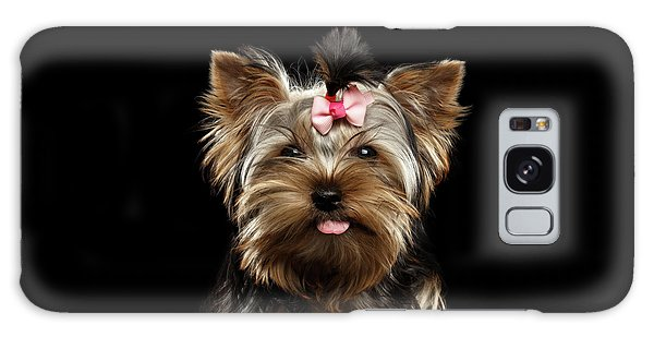 Dog Galaxy S8 Case - Closeup Portrait Of Yorkshire Terrier Dog On Black Background by Sergey Taran