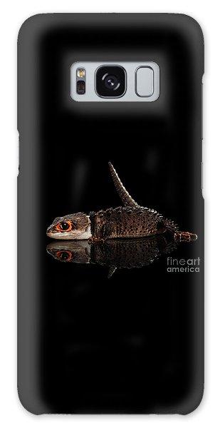 Closeup Red-eyed Crocodile Skink, Tribolonotus Gracilis, Isolated On Black Background Galaxy Case