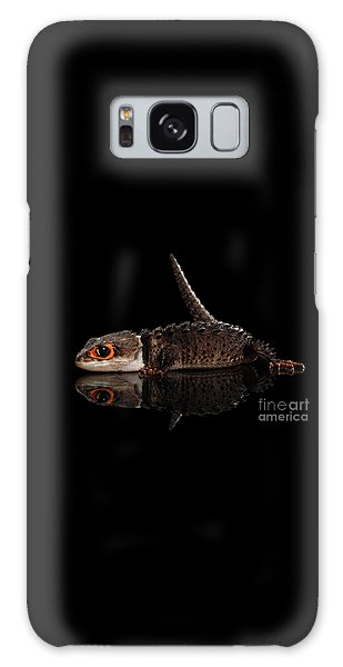 Closeup Red-eyed Crocodile Skink, Tribolonotus Gracilis, Isolated On Black Background Galaxy Case by Sergey Taran