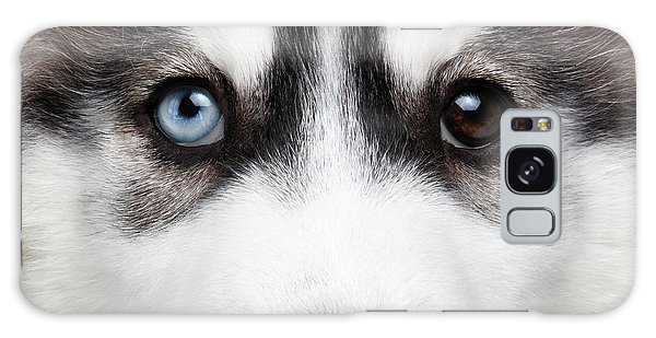 Closeup Siberian Husky Puppy Different Eyes Galaxy Case