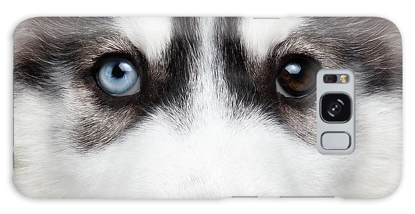 Dog Galaxy S8 Case - Closeup Siberian Husky Puppy Different Eyes by Sergey Taran