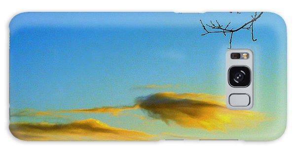 Cloud Heron Galaxy Case