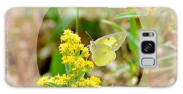 Clouded Sulphur Butterfly Sipping Nectar Galaxy Case