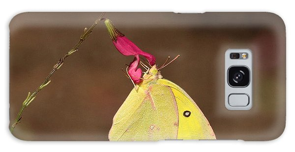 Clouded Sulphur Butterfly On Pink Wildflower Galaxy Case