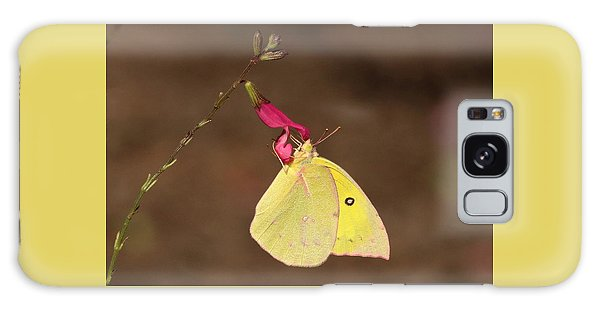 Clouded Sulphur Butterfly On Pink Wildflower Galaxy Case by Sheila Brown