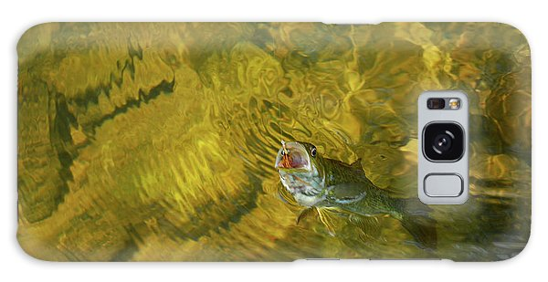 Clouser Smallmouth Galaxy Case