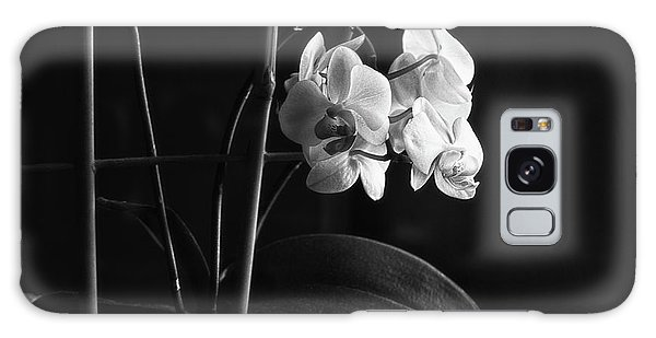 Orchidaceae Galaxy Case - Clustered In A Corner by Susan Capuano