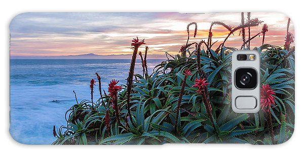 Coastal Aloes Galaxy Case