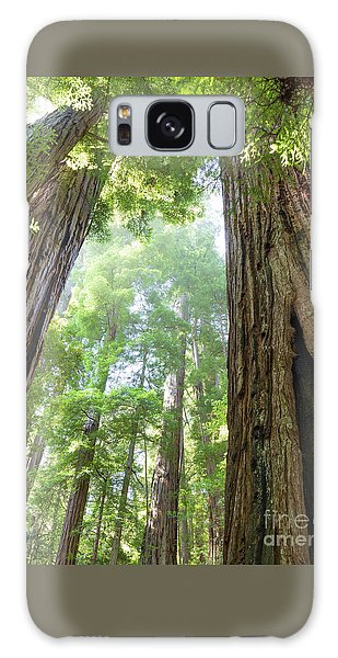 Coastal Redwoods  Galaxy Case