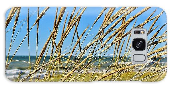 Coastal Relaxation Galaxy Case