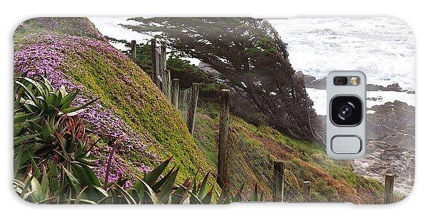 Coastal Windblown Trees Galaxy Case