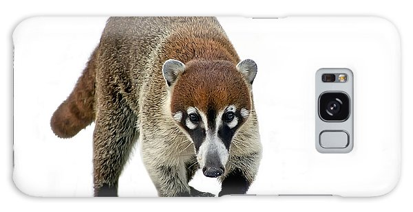 Coatimundi Galaxy Case