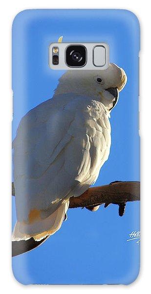 Cockatoo Galaxy Case by Linda Hollis