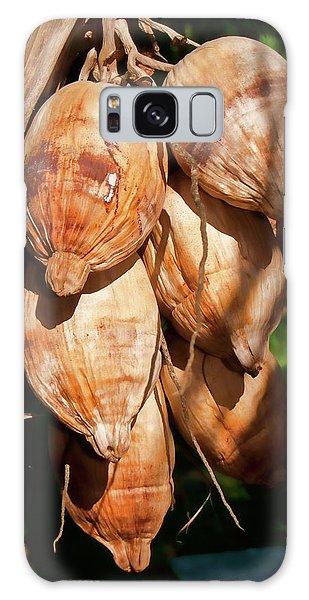 Coconut 3 Galaxy Case