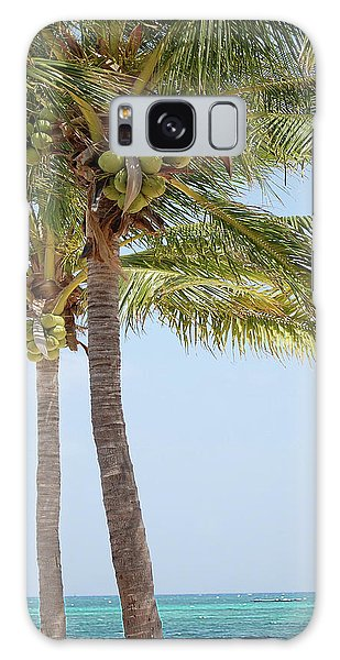 Bahamas Galaxy Case - Coconut Palm Tango by DigiArt Diaries by Vicky B Fuller
